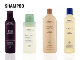 AVEDA Shampoo