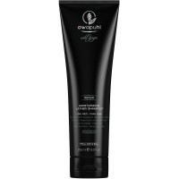 Paul Mitchell Awapuhi Wild Ginger Moisturizing Lather Shampoo 250 ml