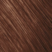 Goldwell Topchic Haarfarbe 6KS blackened copper silver