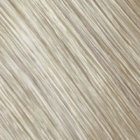 Goldwell Topchic Haarfarbe 11A hellblond-asch