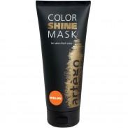 Artego Color Shine Mask Melon 200 ml