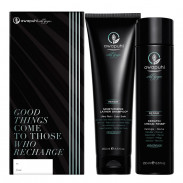 Paul Mitchell Awapuhi Wild Ginger Repair Gift Set